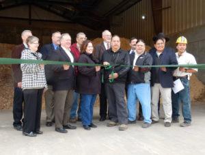Image of Biomass group
