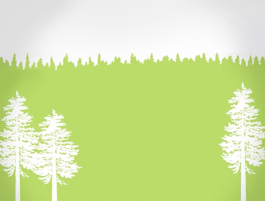 Graphic of white trees and green grass