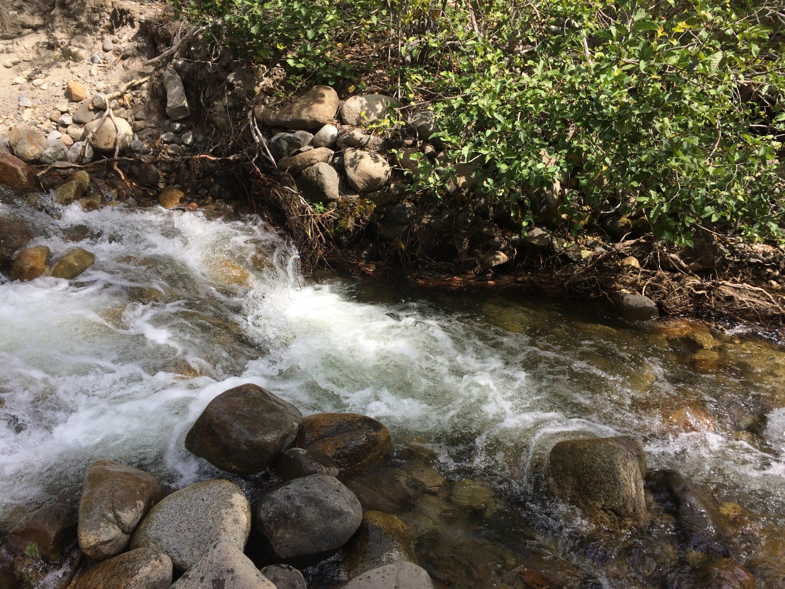 image of a stream