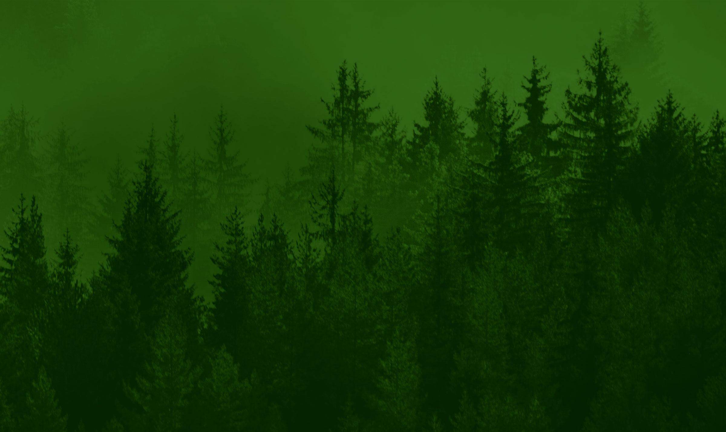 Image of green tree tops with green backdrop
