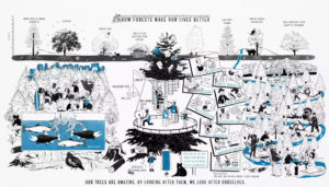 graphic explaining how forests make our lives better