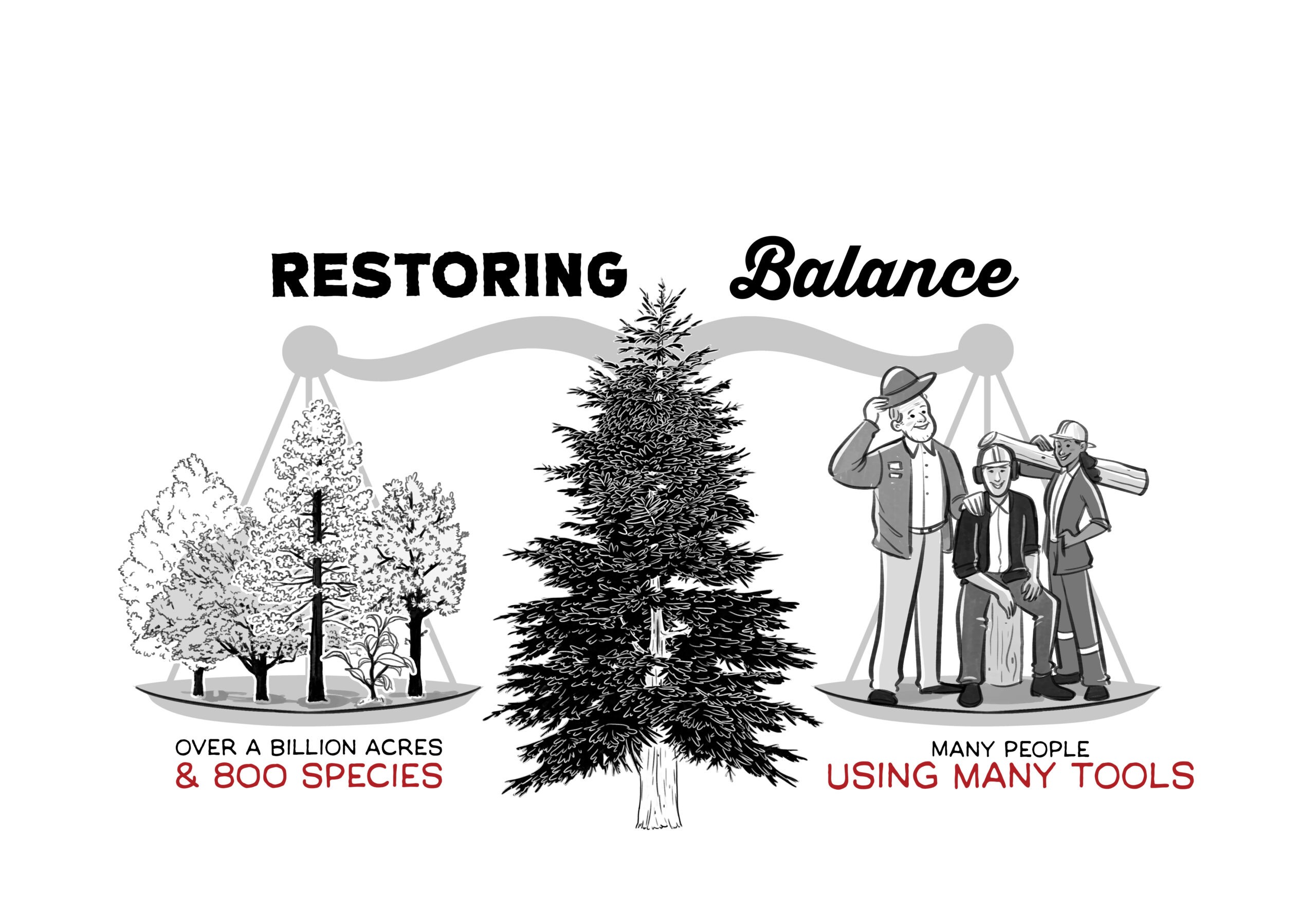 restoring balance for fire solutions