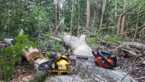 Safety, stickers, chainsaws, and trail maintenance image