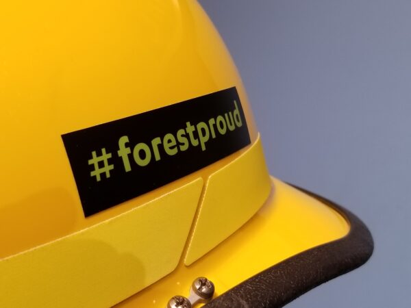 hard hat with sticker
