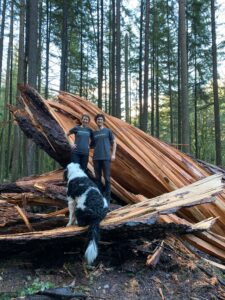 2 people in shirts stand with a dog near a fallen tree
