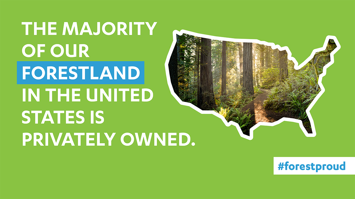 Privately Owned Forests