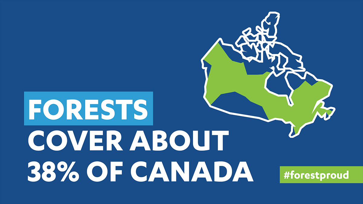 Canada Forest Cover Map
