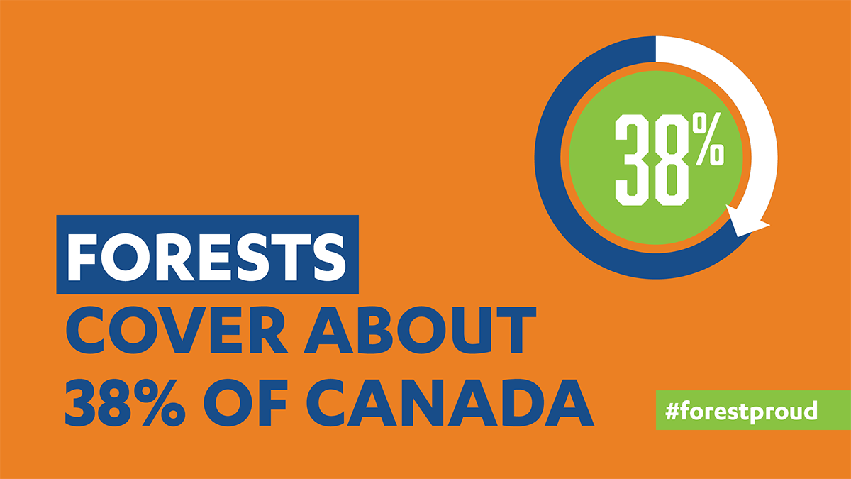 Canada Forest Cover Percentage