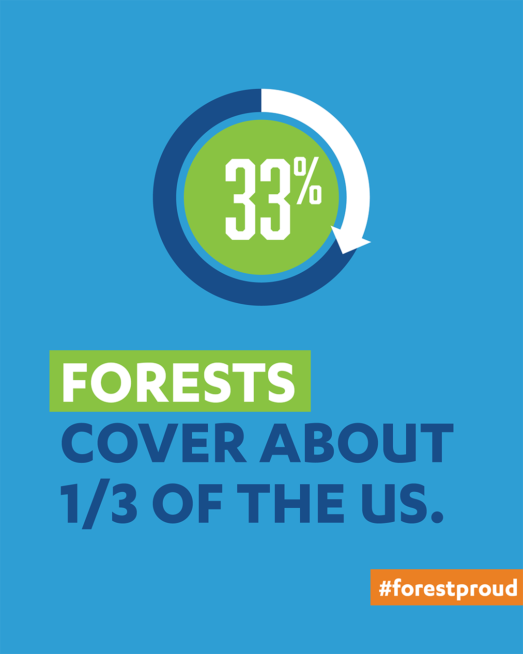 U.S. Forest Cover Percentage