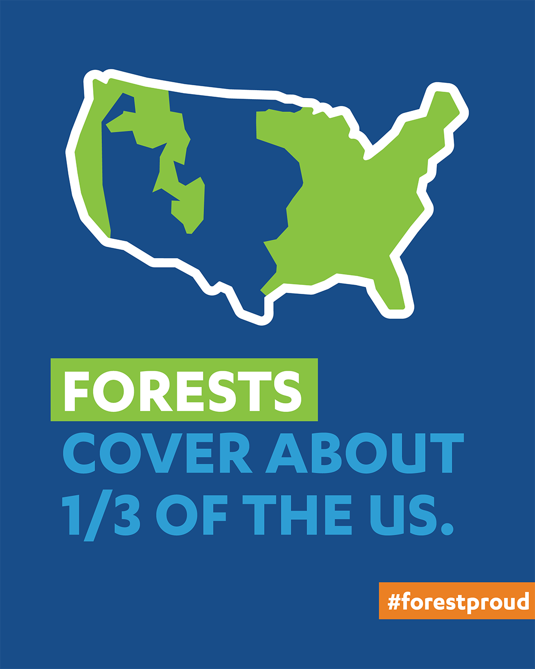 U.S. Forest Cover Map